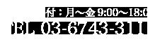 TEL 03-6743-3111