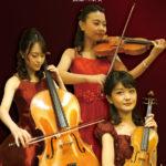 弦楽三重奏のご依頼で人気があります