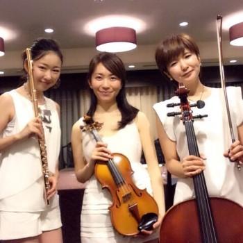 フルート、ヴァイオリン、チェロのミュージスター