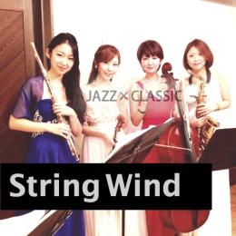 管楽器の弦楽器の四重奏