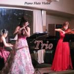ヴァイオリン、フルート、ピアノのクラシック三重奏