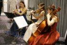 東京曾舘にてクラシック三重奏演奏でした