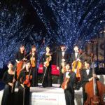 ヴァイオリン、ヴィオラ、チェロ、コントラバスのミニオーケストラ