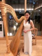 美人演奏家のハープのソロ演奏でした。