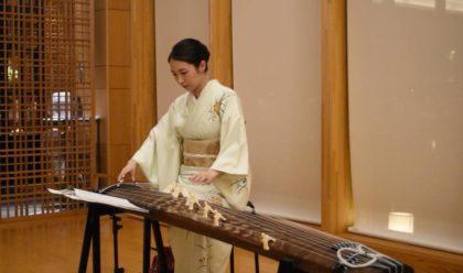 お琴の美人演奏家です